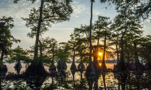 Picture of Lake Norris Unknown
